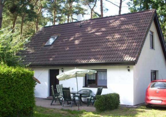 Ferienhaus Weststrand auf Waldgrundstück